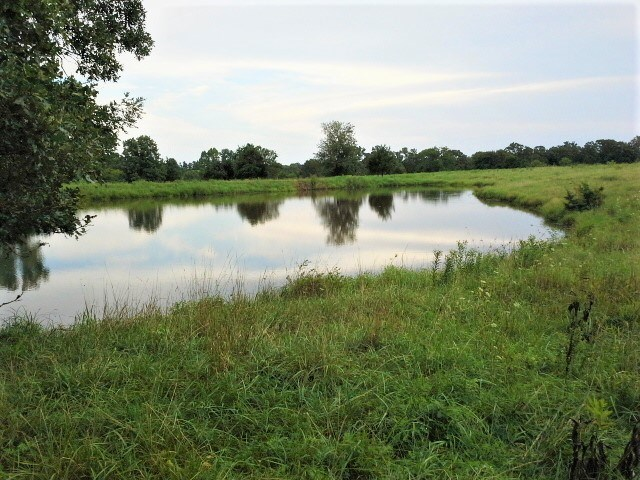 Awesome Hunting/Cattle Property For Sale Camden County, Mo.