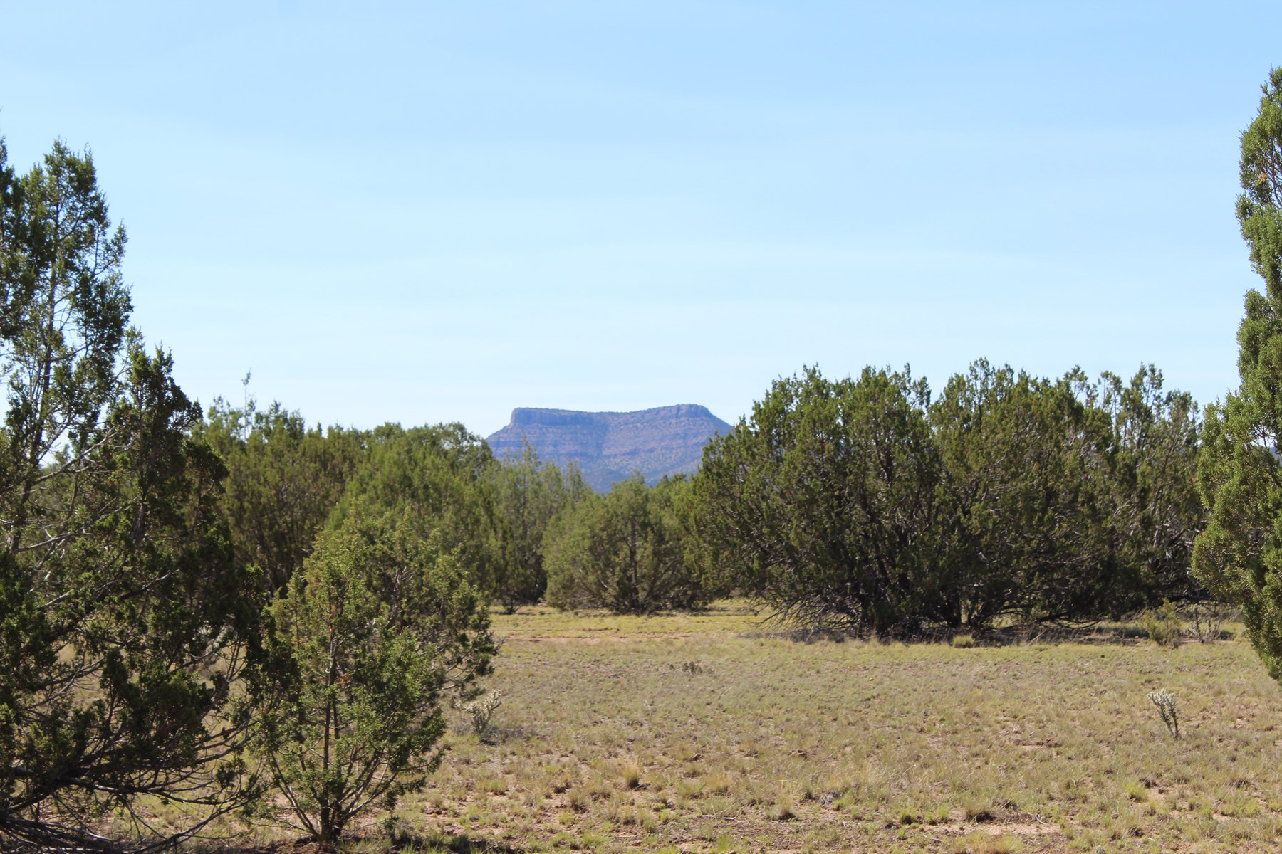 Mountain Acreage Near Seligman AZ with Good Access