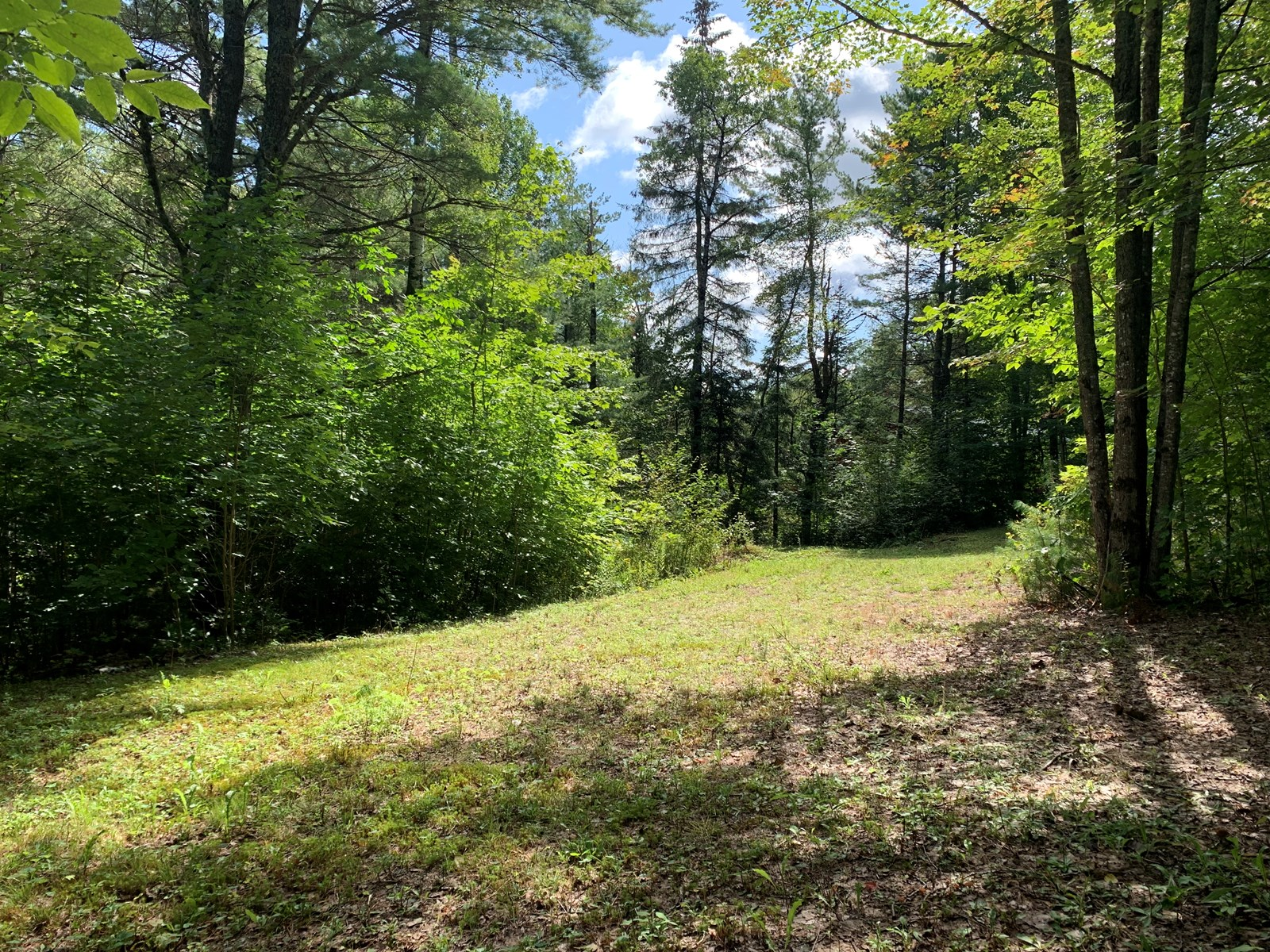 Land for Sale in Lee, Maine