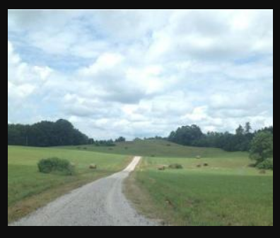Acreage for sale, Albany, Kentucky
