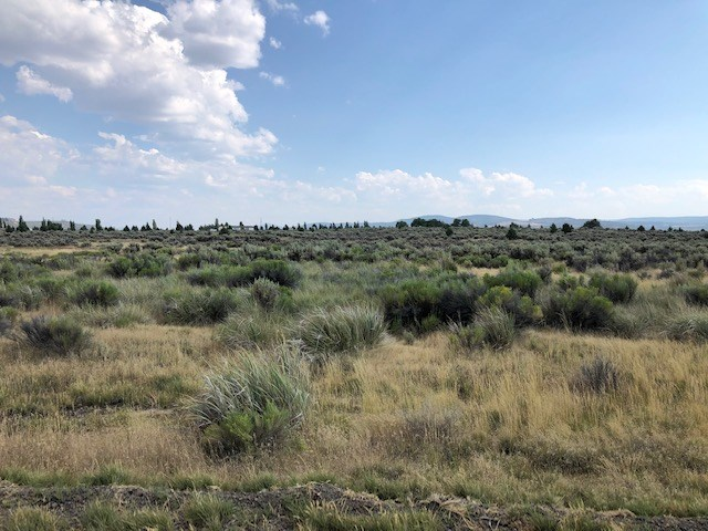 2.14 Acres, 2 lots For Sale in Modoc.