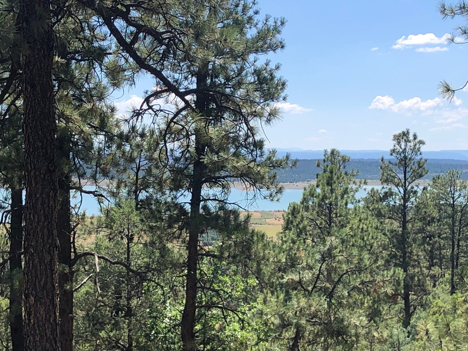 home for sale in Laguna Vista Sub Division South of Chama NM