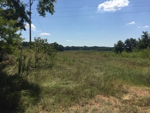 PASTURE LAND FOR SALE JEFFERSON COUNTY FAYETTE MISSISSIPPI