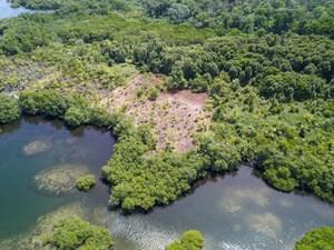 2.5 ACRES WATERFRONT COASTAL LAND, BOCAS DEL TORO, PANAMA