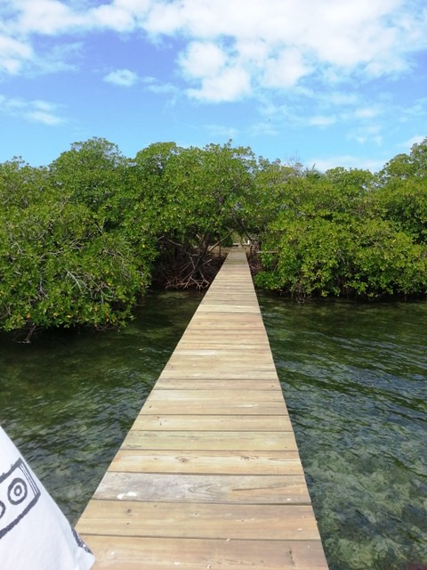 Coastal Waterfront Land, 200 ft dock Bocas del Toro, Panama