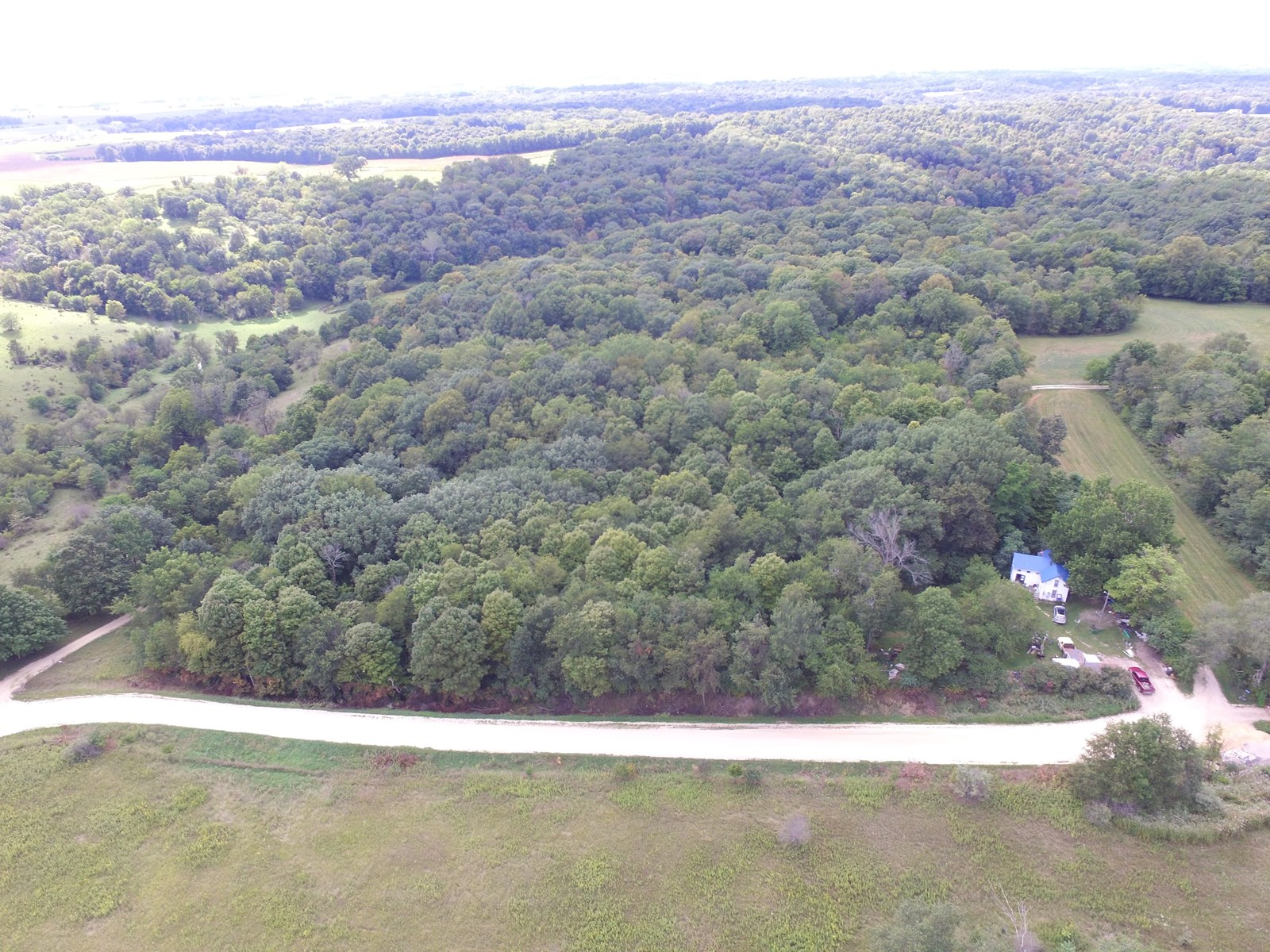 10 acres of Hunting Timber and Privacy
