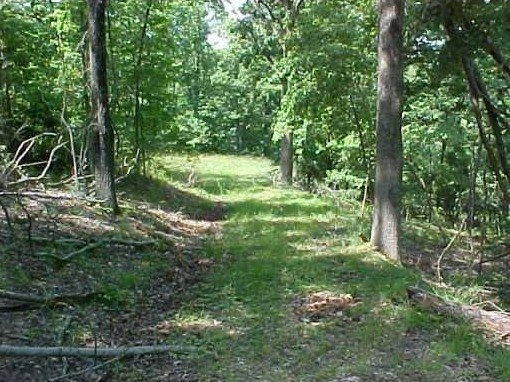 Acreage for sale near Beaver Lake suitable for building