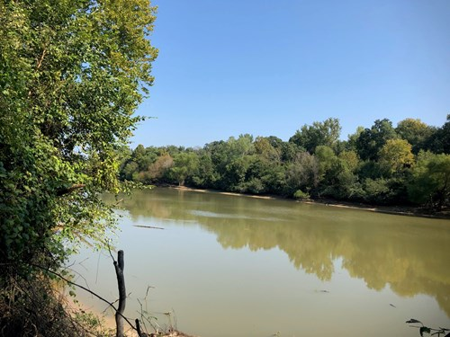Hardwood Timberland on Ouachita River for Sale in South AR