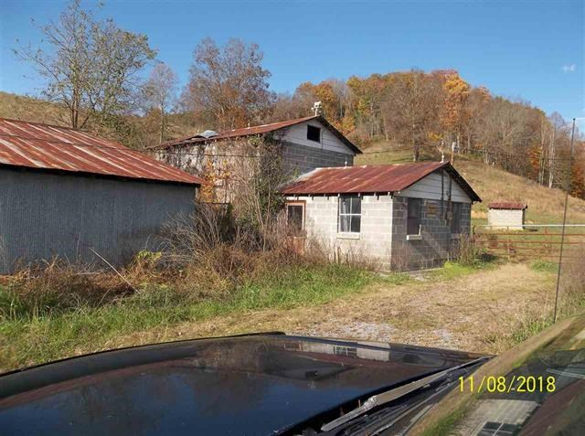 13.41 Acres For Sale in Mohawk, TN