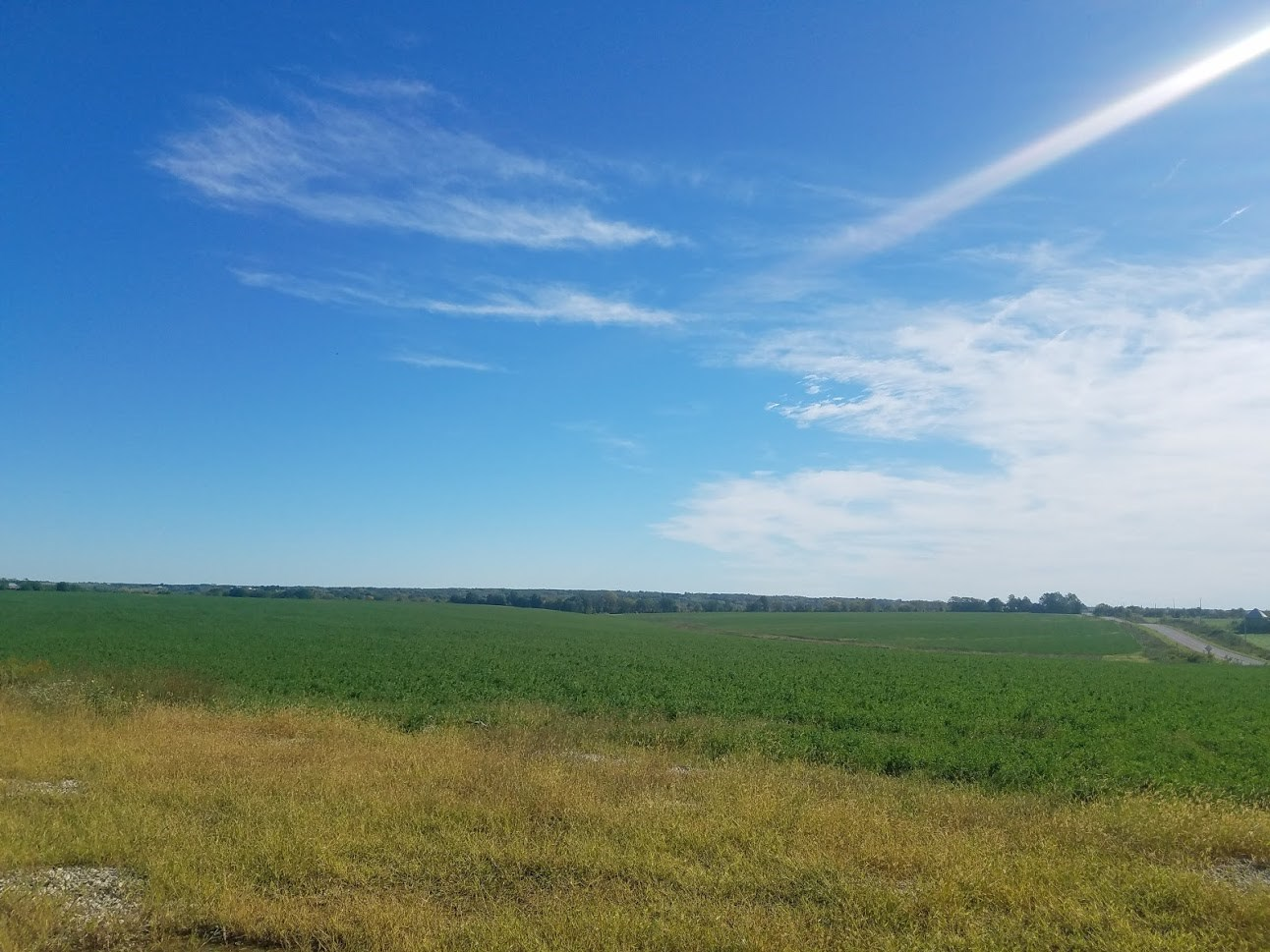 189.59 Alfalfa Farm For Sale in Centerville, IA