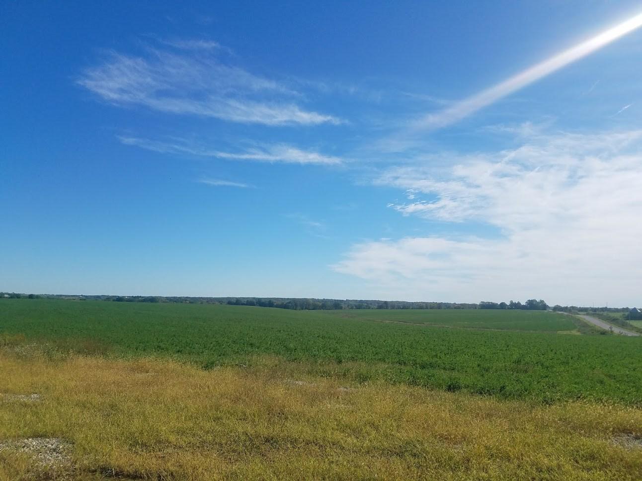 189.59 Alfalfa Farm For Sale in Centerville, IA