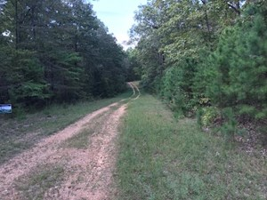 3 WOODED ACRES CLOSE TO NATIONAL FOREST.