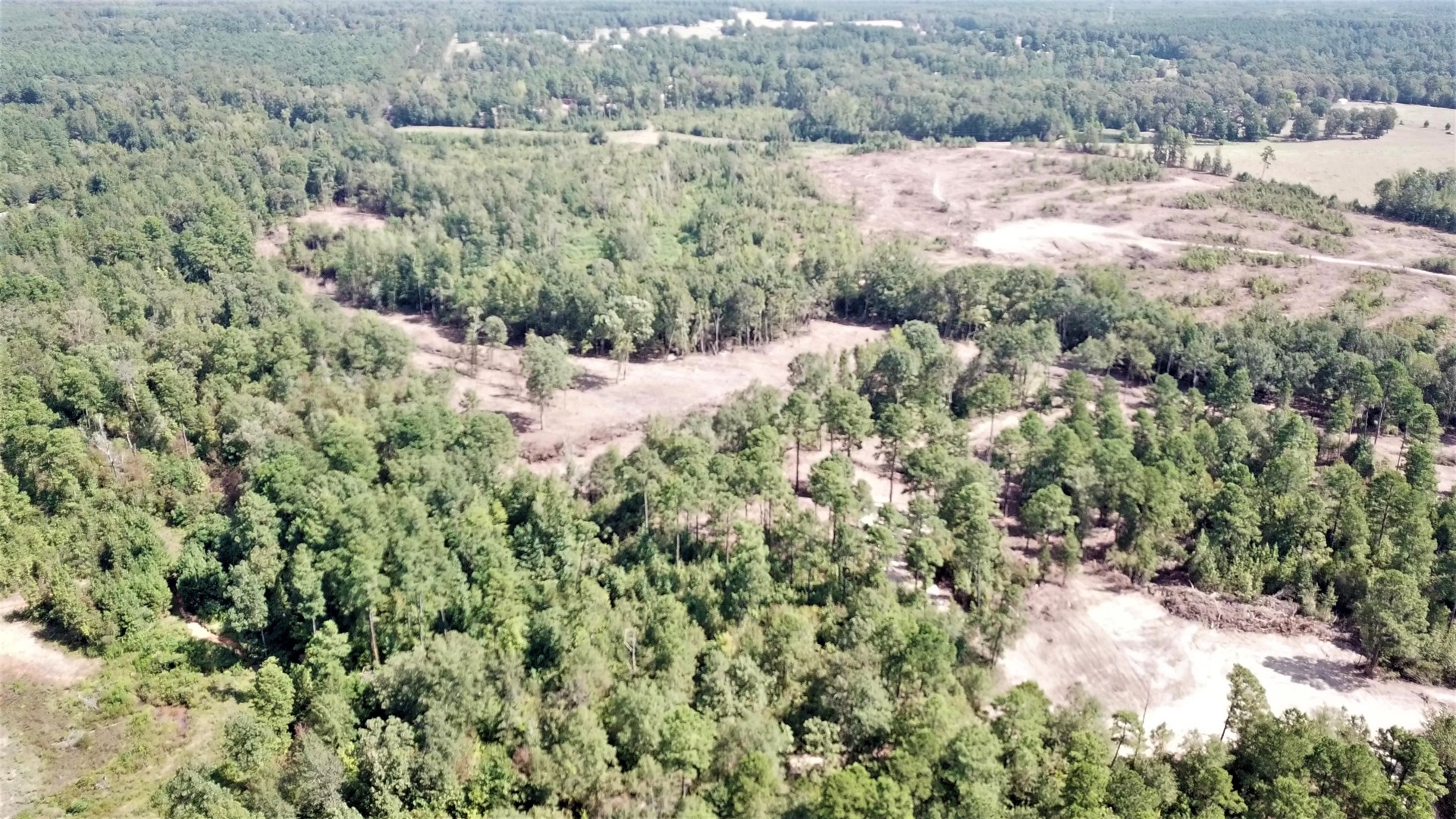East Texas Land For Sale, Hunting, Recreation, Property
