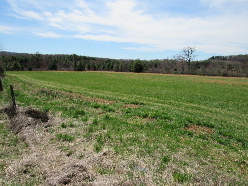 Farm Land for Sale in Floyd VA