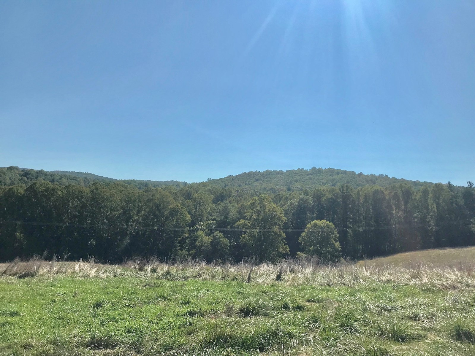 Beautiful Cleared Building Lot for Sale in Floyd VA