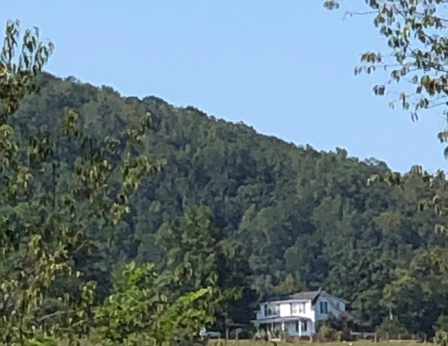 Historic Blue Ridge Mountain Farmhouse for Sale in Floyd VA
