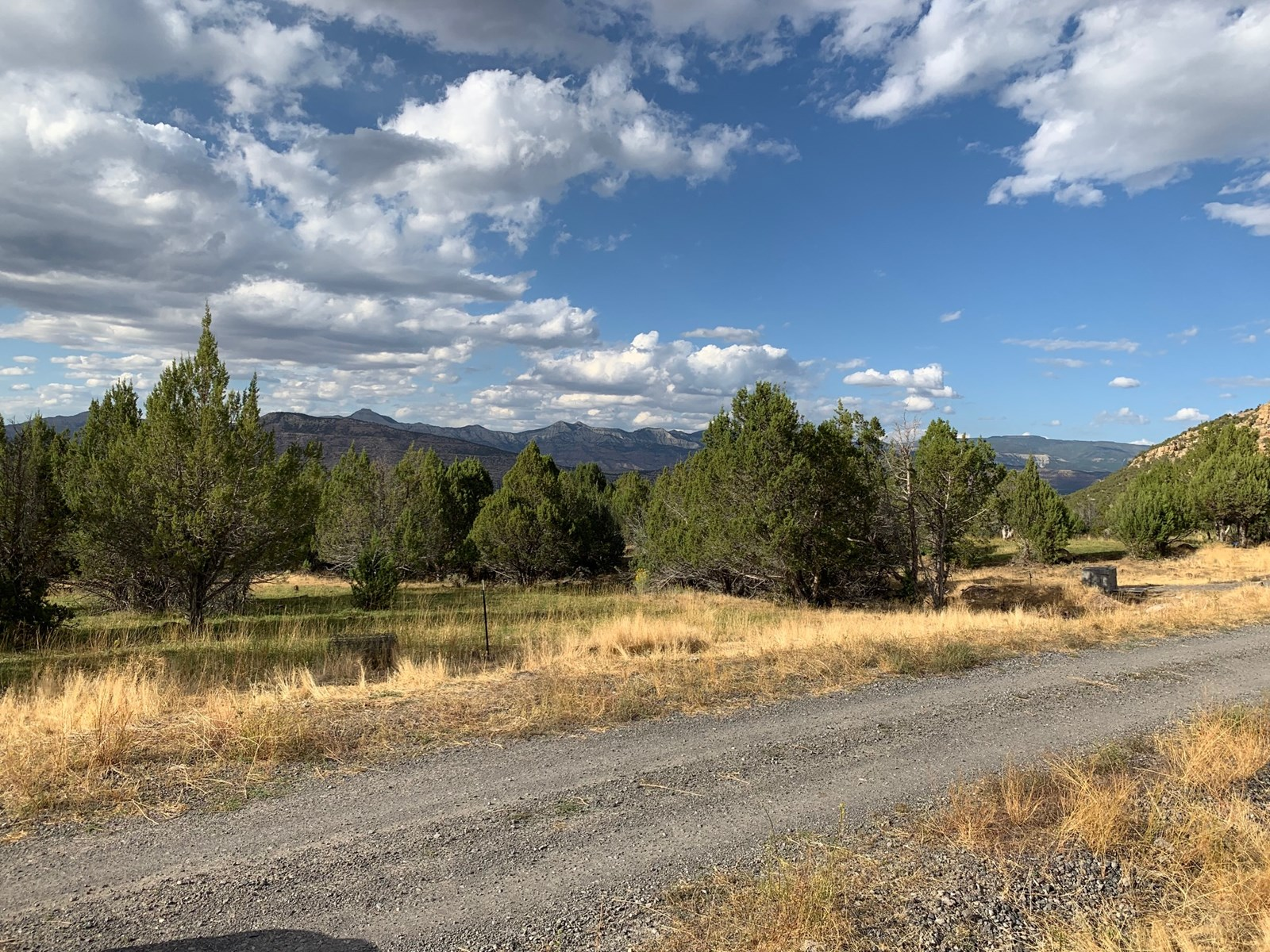 Building Lot in Colorado with Irrigation