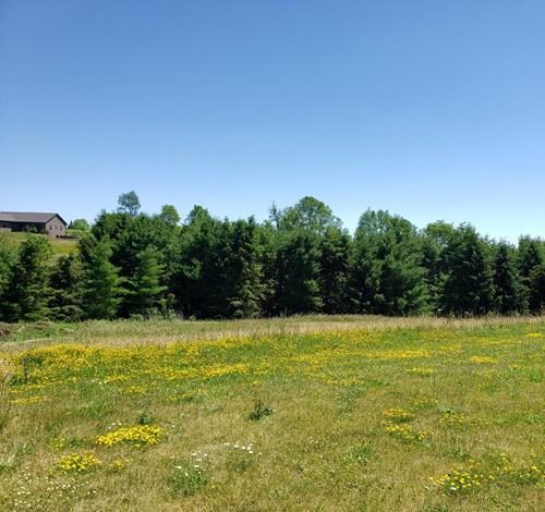 Lot #40 .486 Acres Golf Course Access For Sale