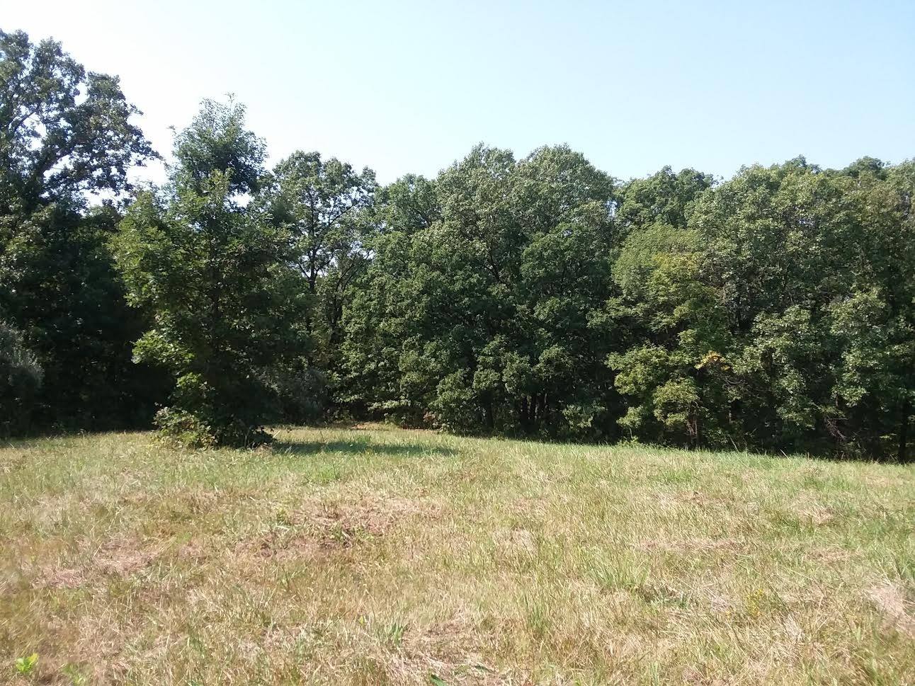 40 Acres of Hunting Land in Kirksville, MO