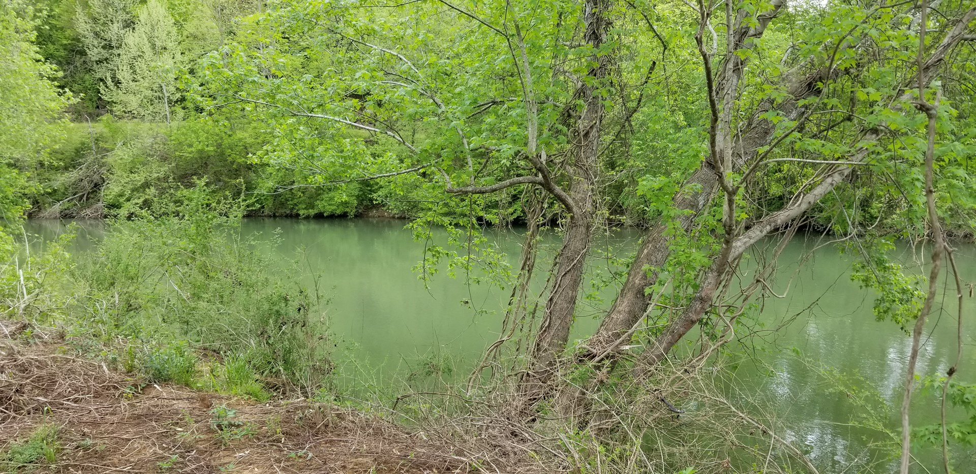 Buffalo River Camping lot for sale.