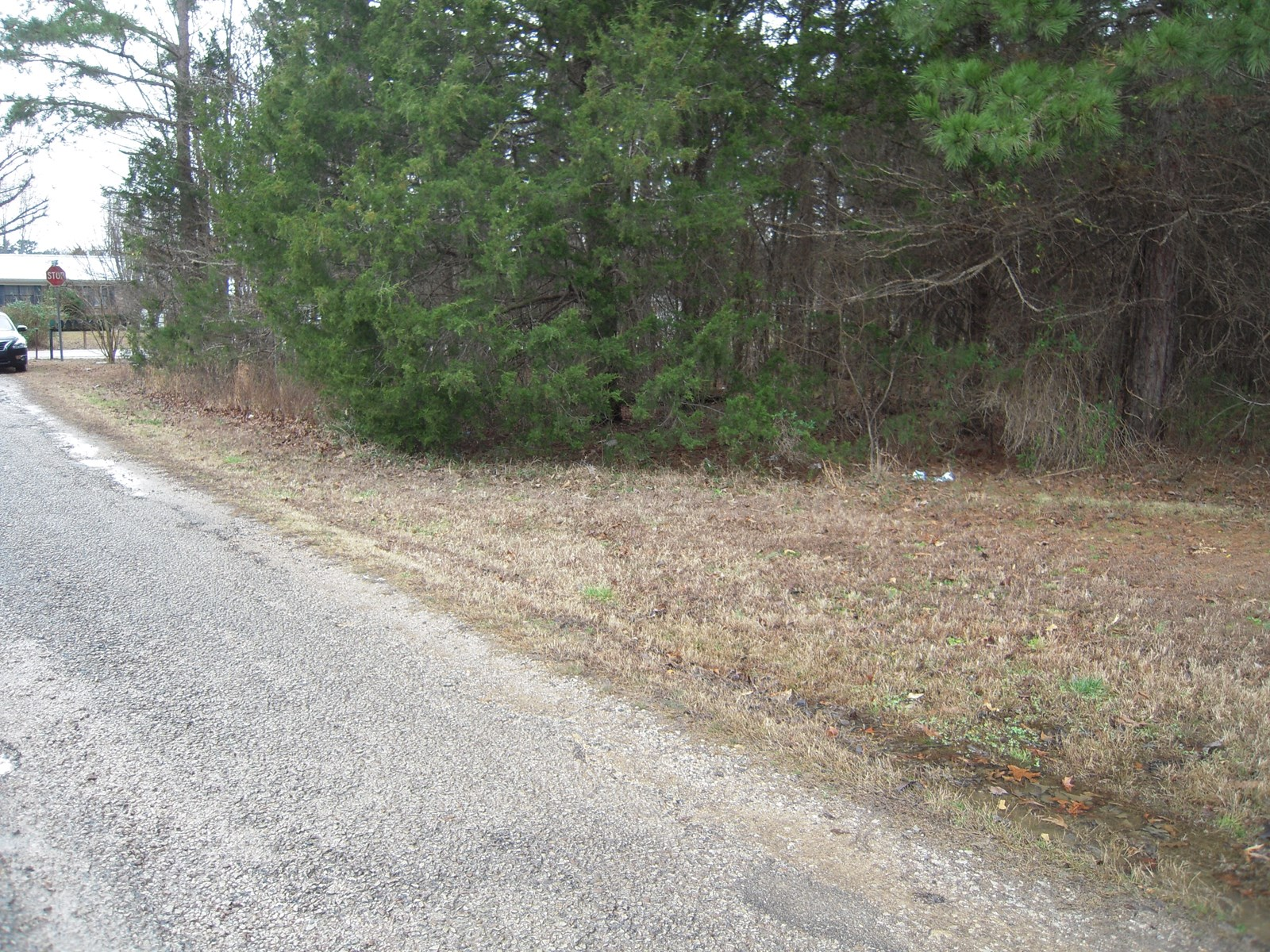 LAND FOR SALE IN SAVANNAH TN TO BUILD A HOME ON, VACANT LAND