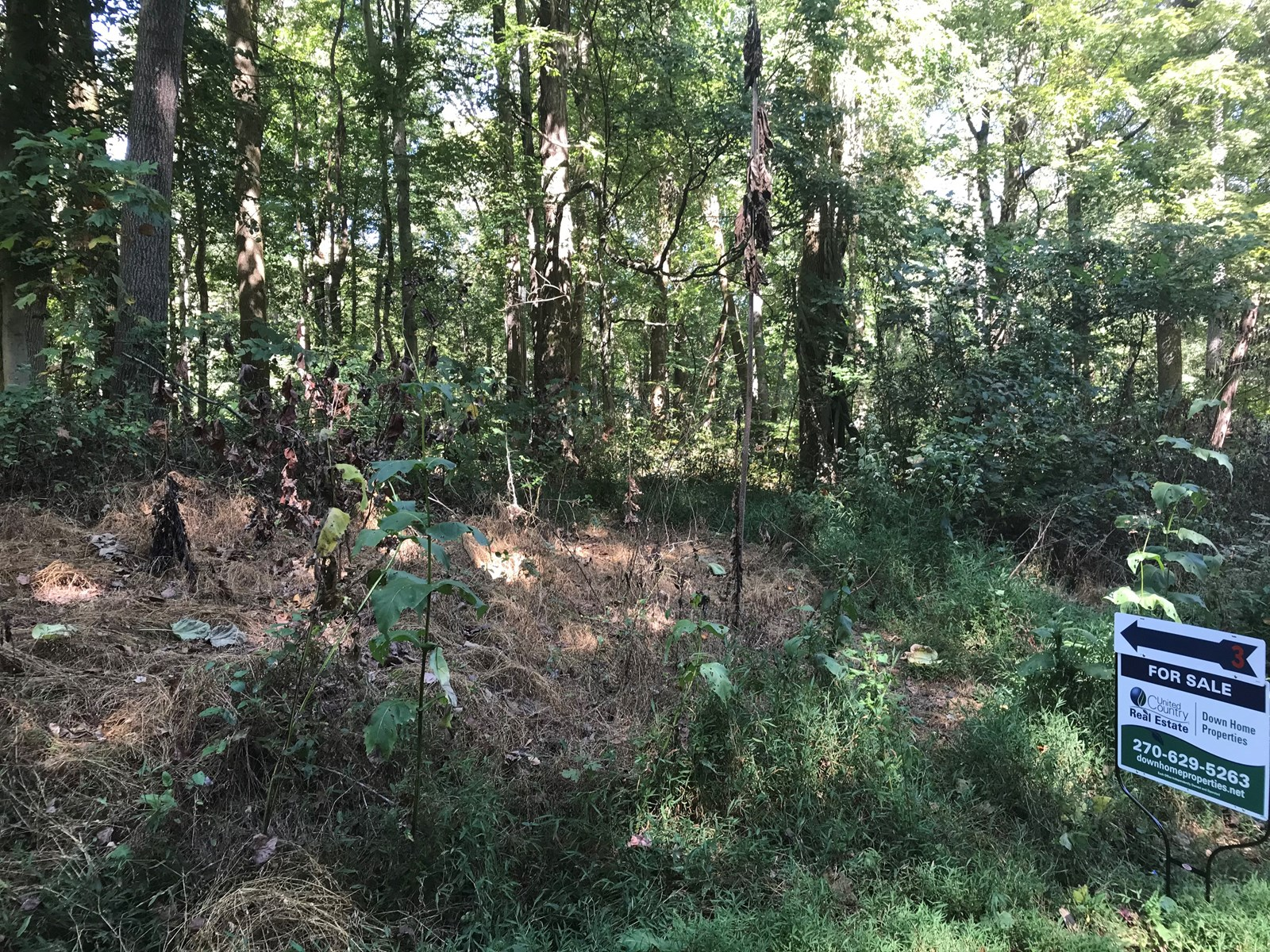 Lot # 444 In Park view Shores Subdivision, Scottsville KY