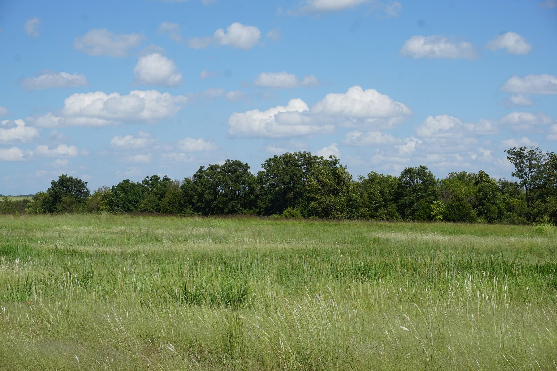No Reserve Auction, Cushing, OK 160 Ac +/- Sat., Oct 12 @ 12:30 p.m.