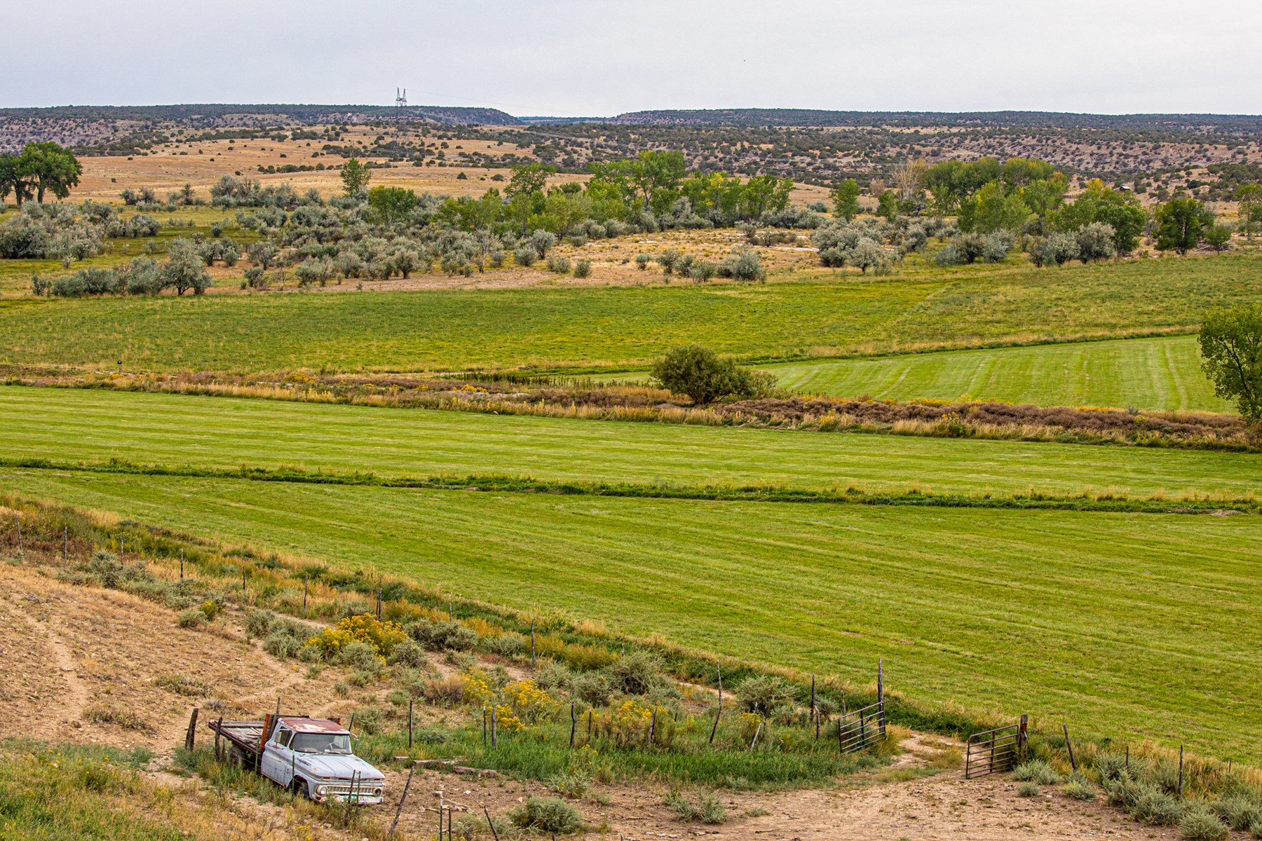 irrigated ranch for sale