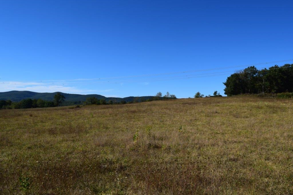 Rural Land for Sale in Floyd VA