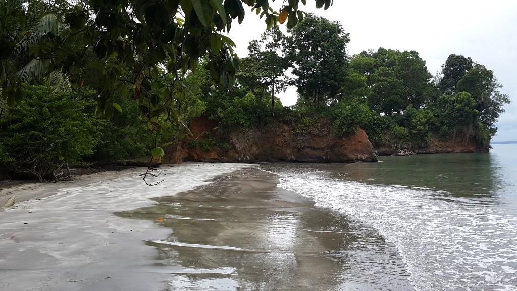 Caribbean beachfront in Bocas del Toro Panama, Isla Tigre