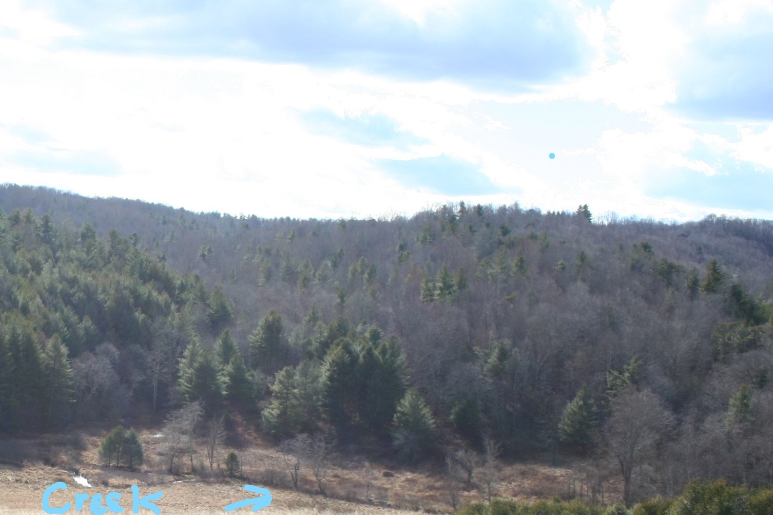 Wooded Recreational Property for Sale in Floyd VA!