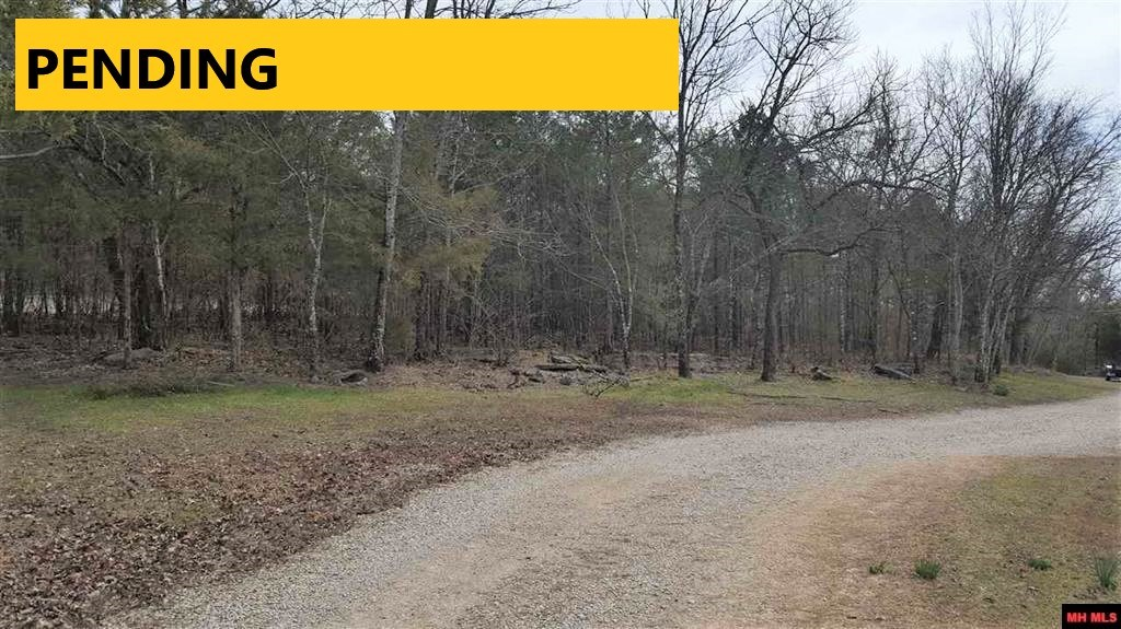 LARGE ACREAGE CLOSE TO TOWN LAYS GOOD