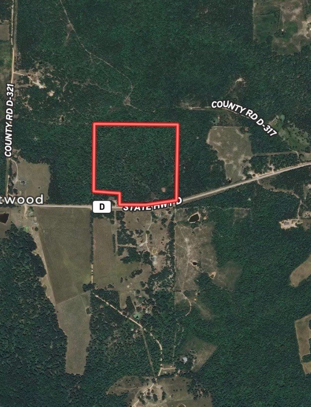 40 +/- Acres of Wooded Hunting or Home Site