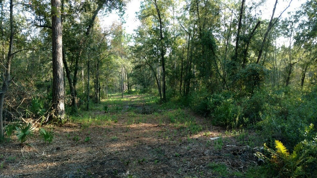 20 ACRE PARCEL JUST 10 MINUTES FROM TOWN!