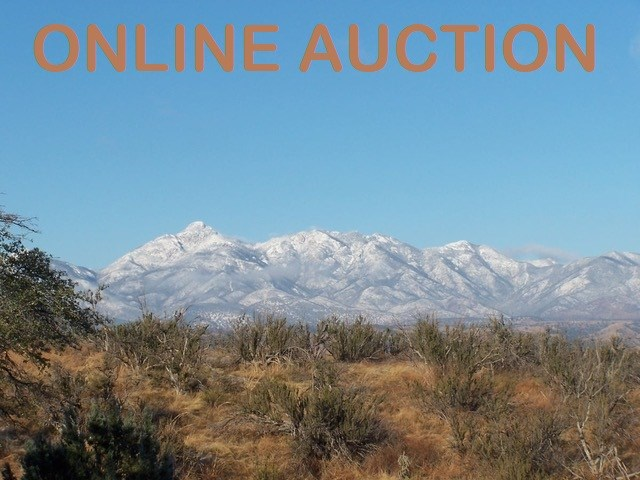 ONLINE AUCTION – 0.42 ACRE LOT FOR SALE, SONOITA, AZ