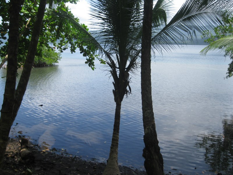 3 Oceanview Coastal lots, half acre each, Bocas del Toro