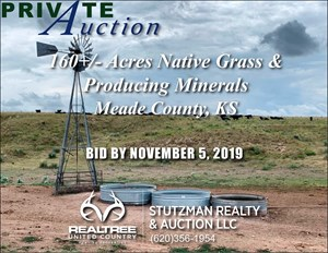 MEADE COUNTY KS 160+/- ACRES GRASS & PRODUCING MINERALS