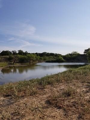 160 +/- ACRES RANCH, RECREATION, HUNTING LAND FOR SALE IN TX