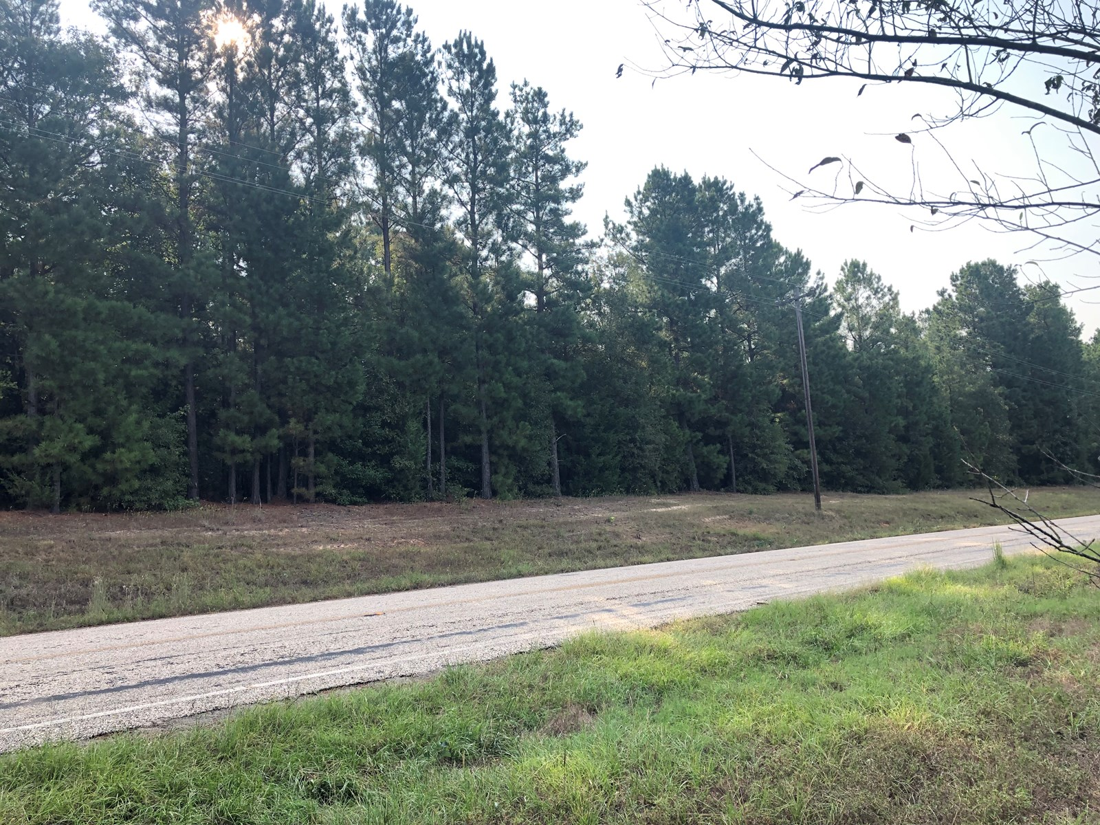 East Texas Home Site Timberland Recreational Land For Sale