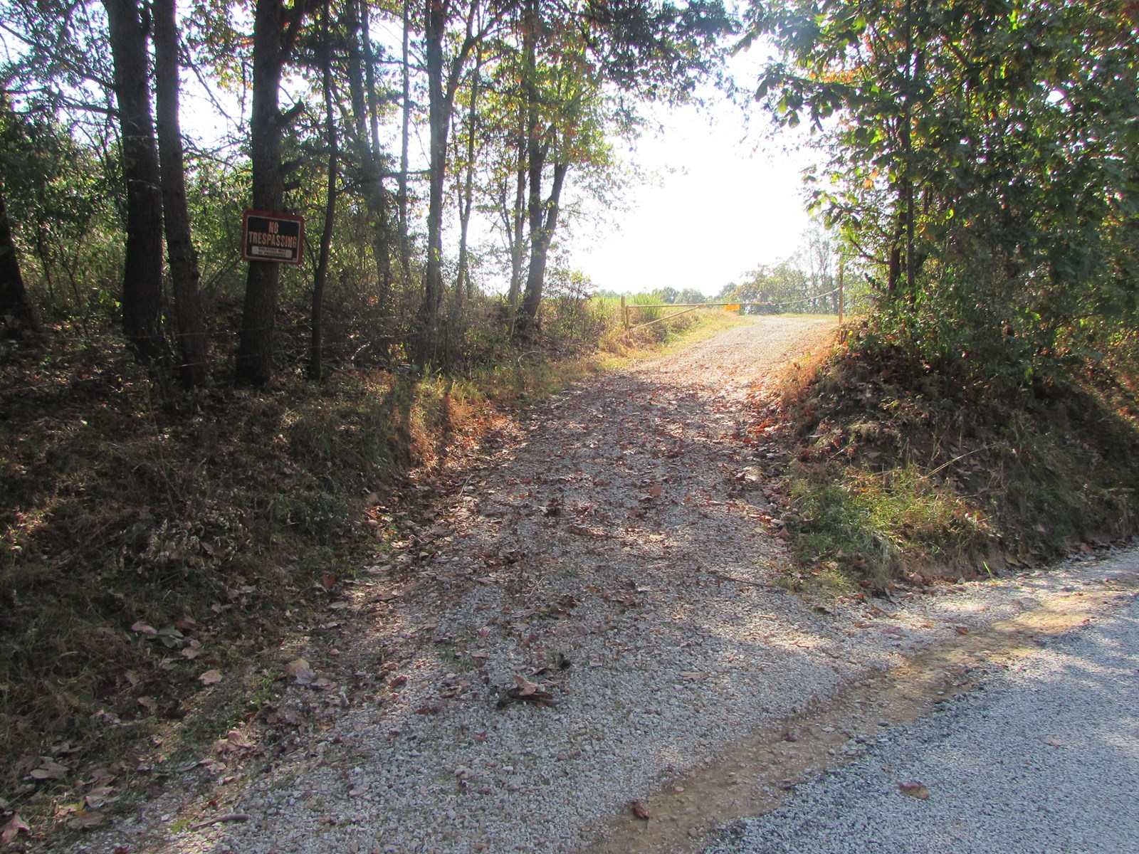 Beautiful 132.5 Acres with A Lot to Offer in WV