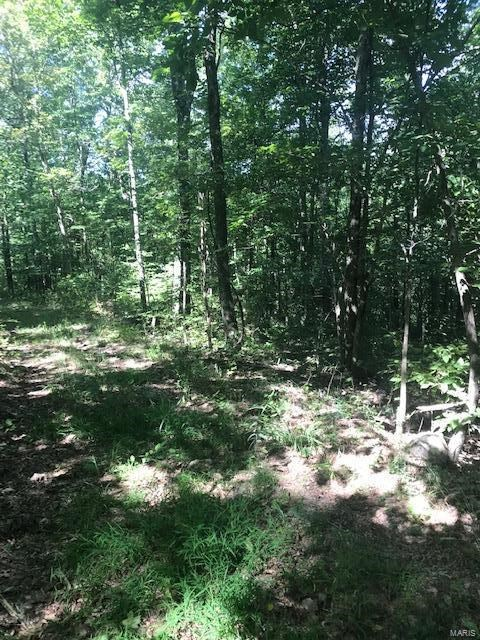 MISSOURI OZARKS HUNTING PROPERTY FOR SALE
