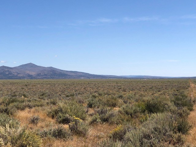 20 Acres For Sale in Termo -Lassen County.
