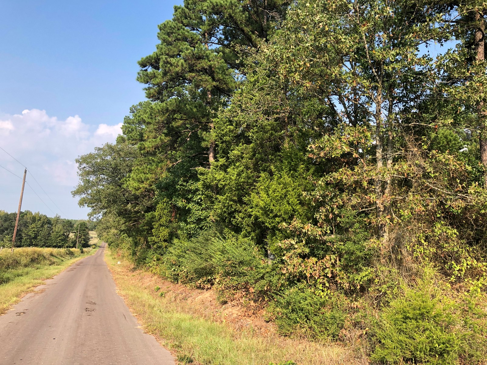 East TX Homesite, Timberland, Recreational Land for Sale