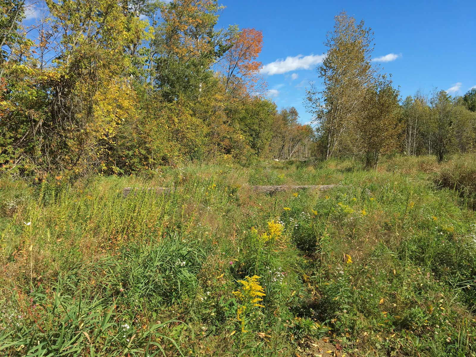 Land lot for sale in Corinth, Maine
