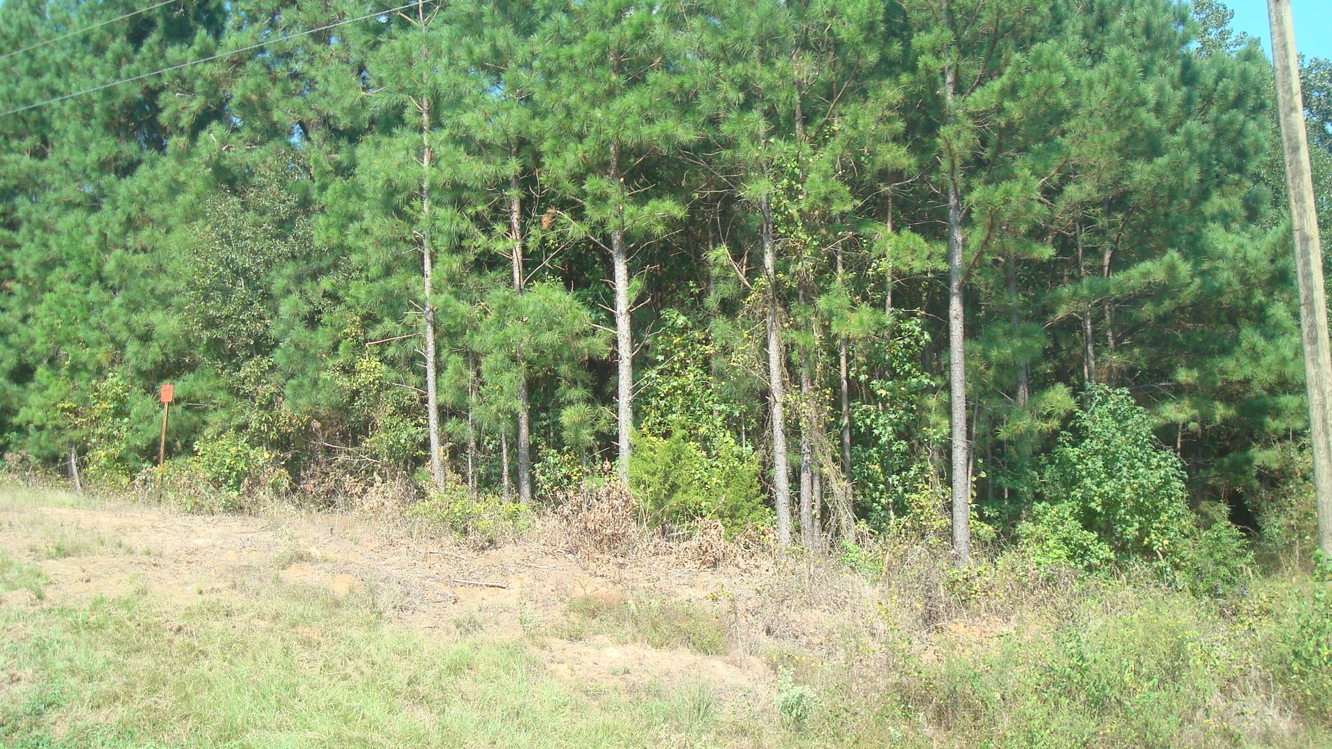 East Texas Recreational Real Estate For Sale