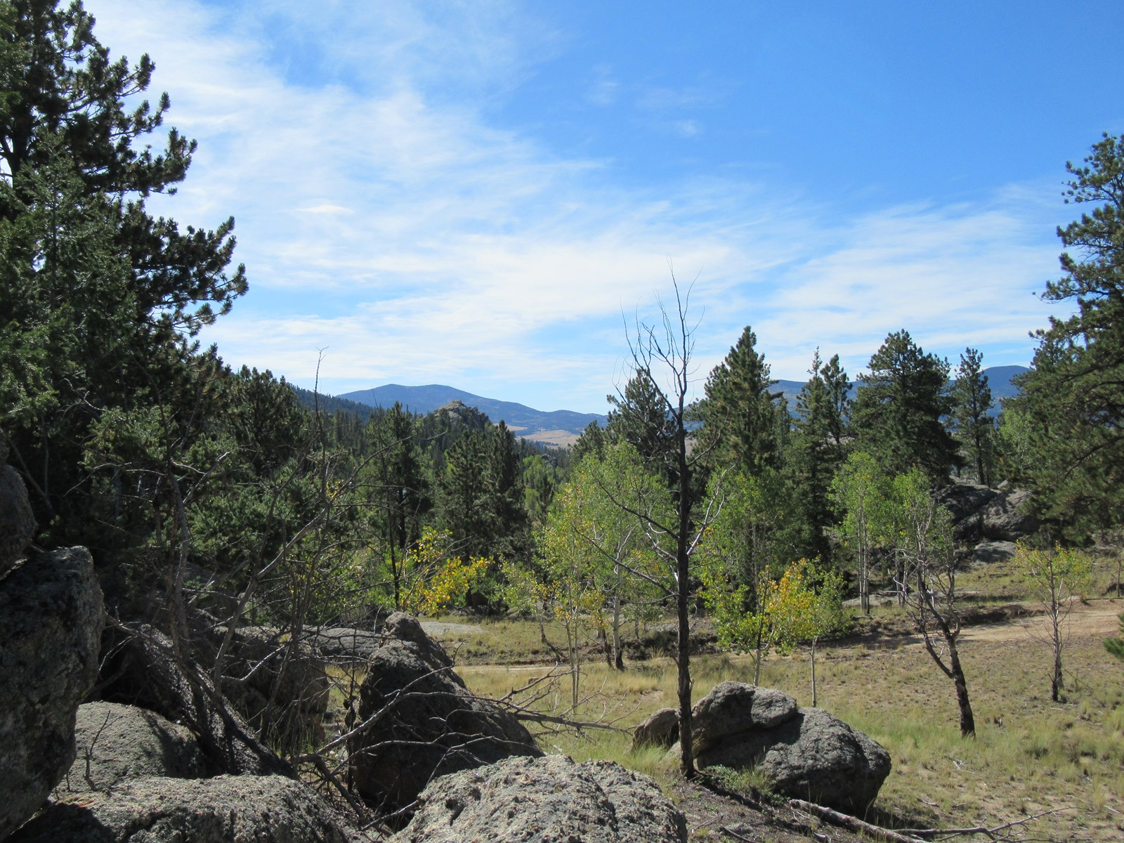 One Acre Lot with Views of Eleven Mile Reservoir