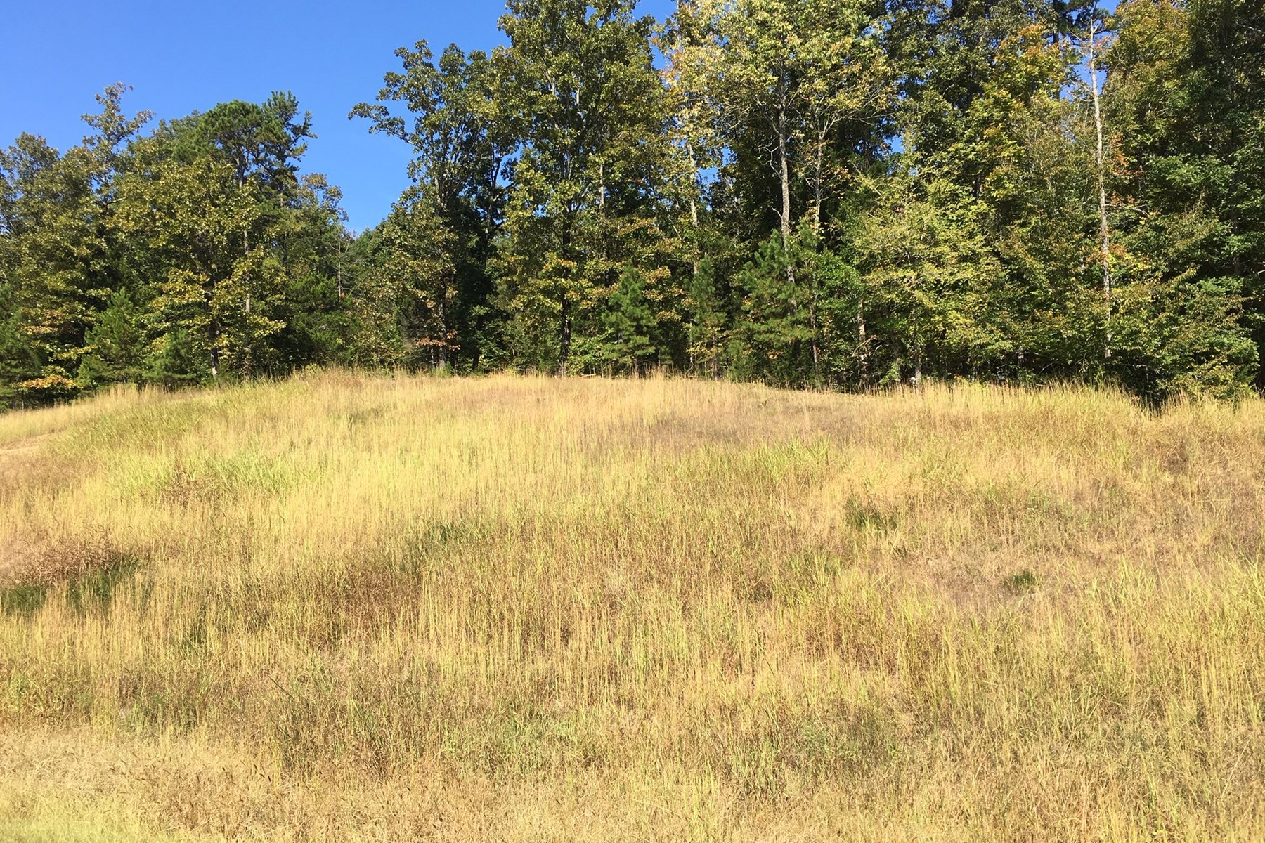 TN LAND FOR SALE NEAR TN RIVER AND MARINA- NO RESTRICTIONS