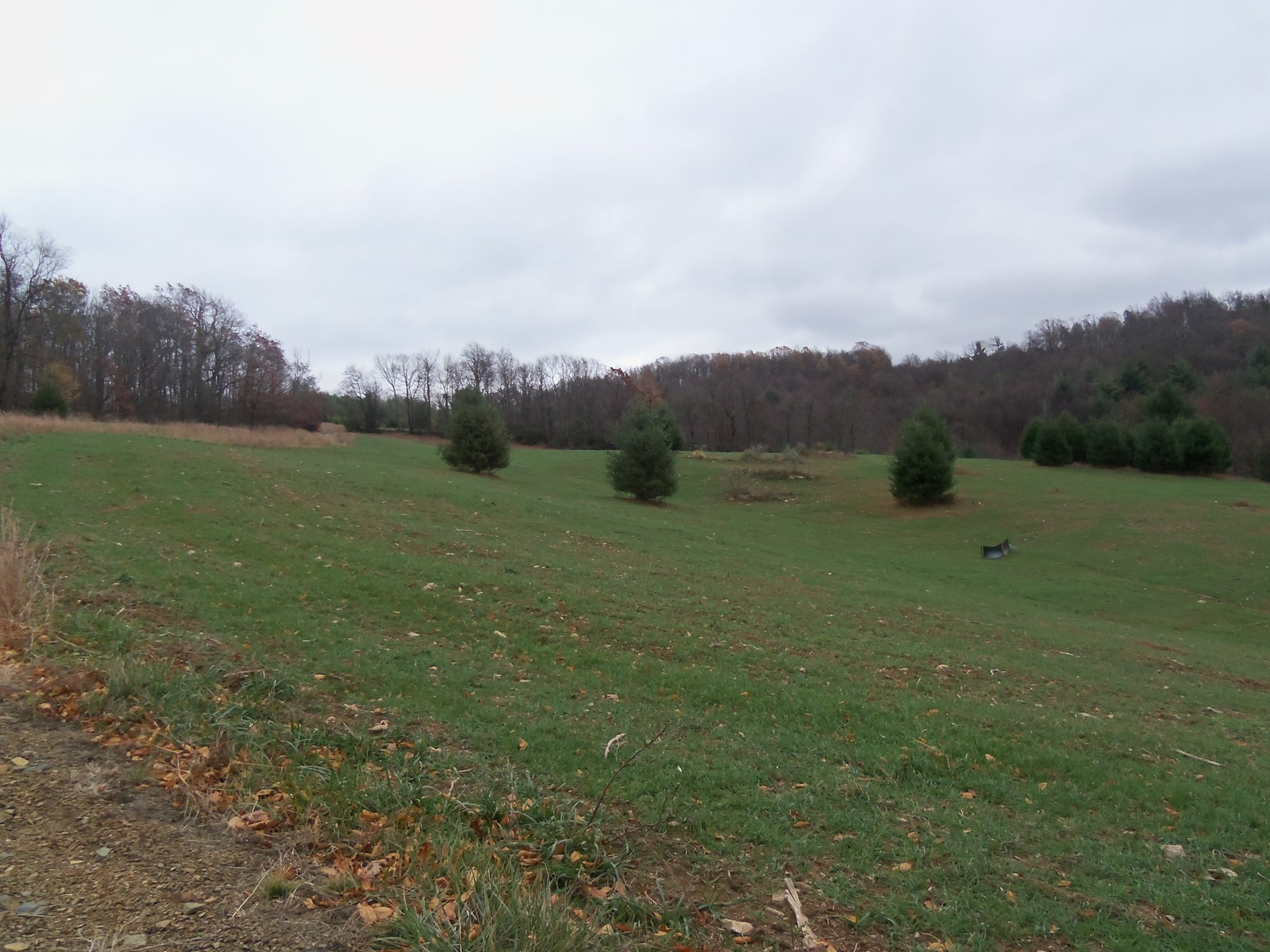 Building Lot in Floyd County for Sale