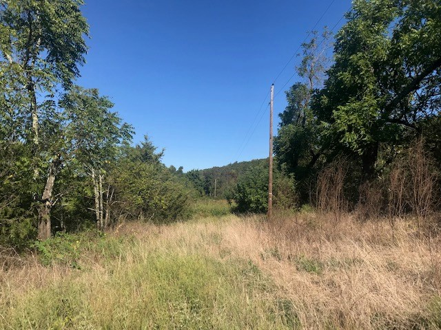 Wooded Timberland Acreage for Sale in Ozark Mountains