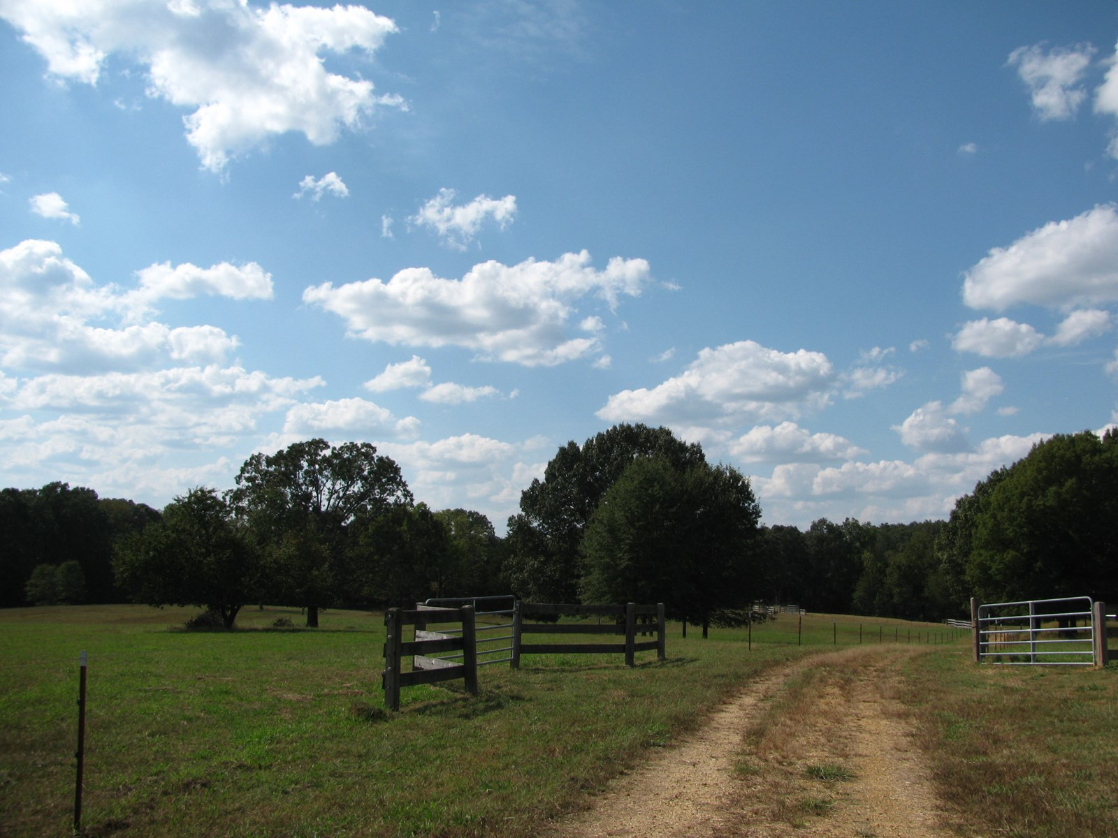 FENCED PASTURE LAND FOR SALE IN TN, CATTLE OR HORSE FARM